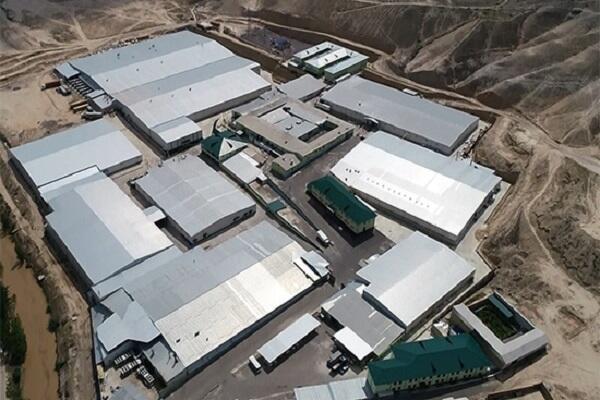 Завод MERRYMED FARM в Узбекистане